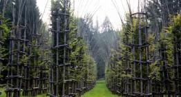 Arte Sella sculpture park