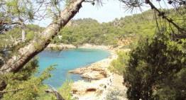 Ibiza in un giorno