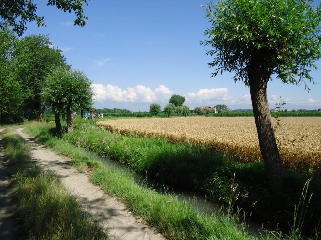 Viaggi e Miraggi Piemonte