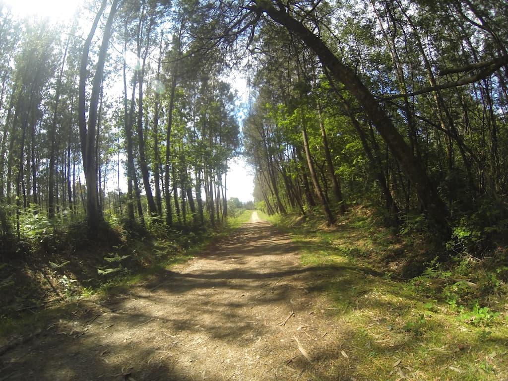 Santiago di Compostela, cammino inglese