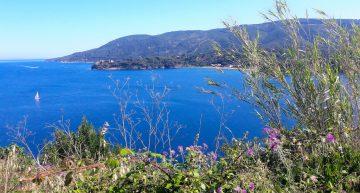 Isola d'Elba: Porto Azzurro da scoprire