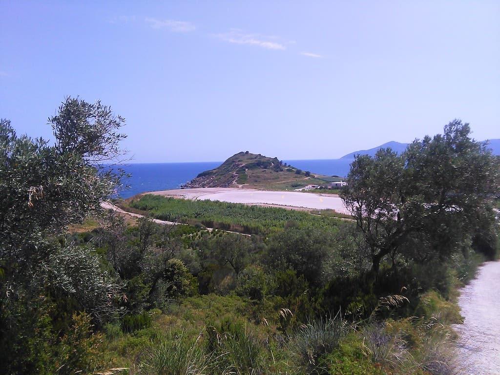 Skiathos, l'isola greca dal cuore verde