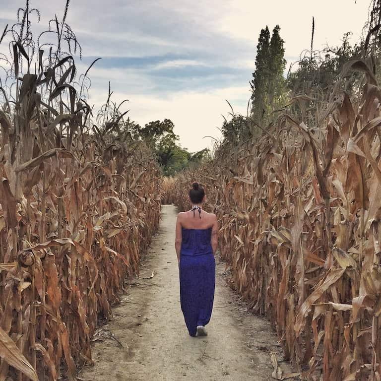 Senigallia, torna il Labirinto di HORT