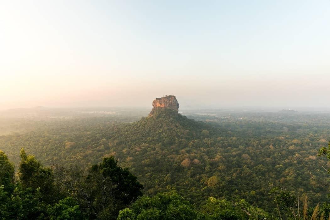 Sri Lanka, un viaggio nella natura tropicale