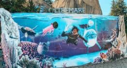 Oltremare Riccione, family experience park